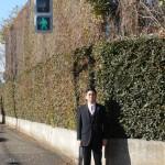 市役所前交差点の東西にかかる歩行者用信号機の設置
